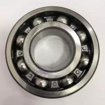 BISHOP-WISECARVER SS-MJ-187-E-NS  Ball Bearings