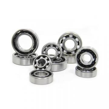 BISHOP-WISECARVER JA-10-ENS  Ball Bearings